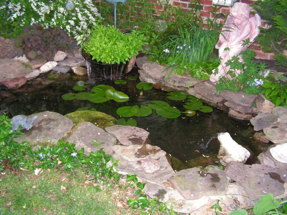 Pi ces d 39 eau global jardins for Fish pond design uk